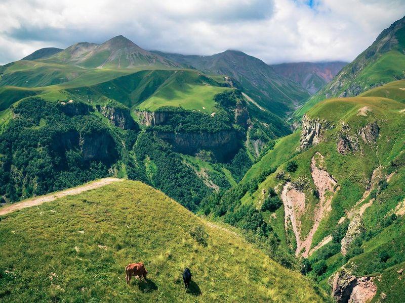 Грузинская душа Кахетия - экскурсия в Тбилиси