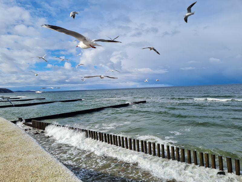 Яркое путешествие в Светлогорск, Балтийск и Янтарный - экскурсия в Калининграде