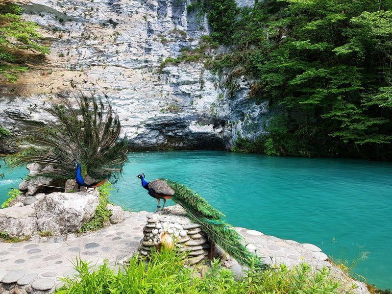 Душевная экскурсия в сердце Абхазии - экскурсия в Гаграх