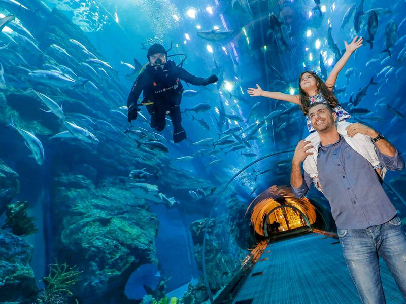 Билеты в Аквариум Дубай Молла - экскурсия в Дубае
