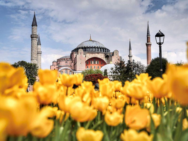 Стамбул с нуля - экскурсия в Стамбуле