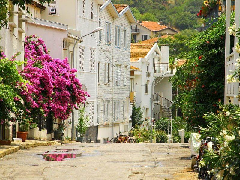 Из Стамбула — на живописные Принцевы острова! - экскурсия в Стамбуле