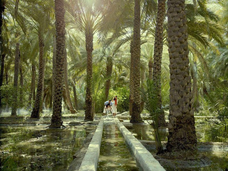 ИзДубая— вАль-Айн - экскурсия в Дубае