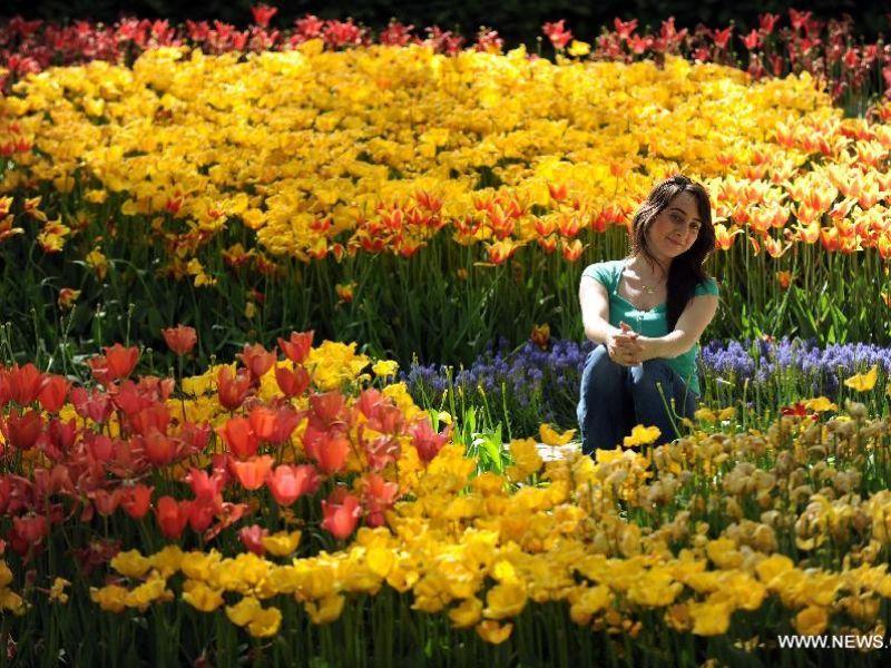По Босфору на фестиваль тюльпанов в парк Эмирган (апрель) - экскурсия в Стамбуле