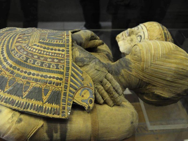 Охота на мумий в Эрмитаже - экскурсия в Санкт-Петербурге