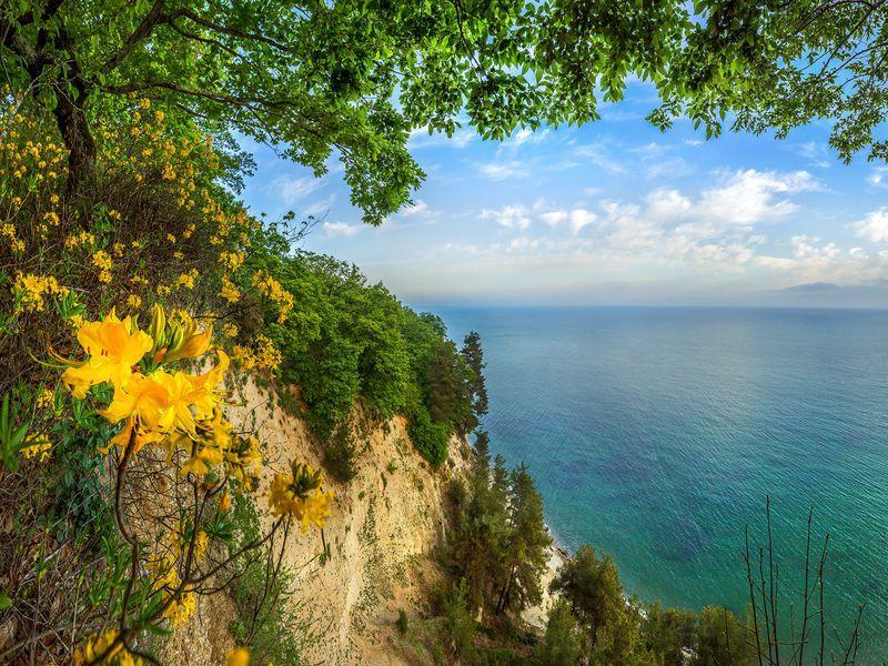 Природа иистория Абхазии— поездка изАдлера - экскурсия в Адлере