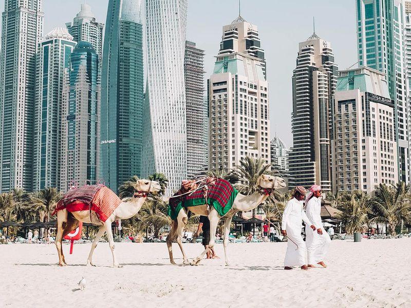 В Дубай за впечатлениями! - экскурсия в Дубае
