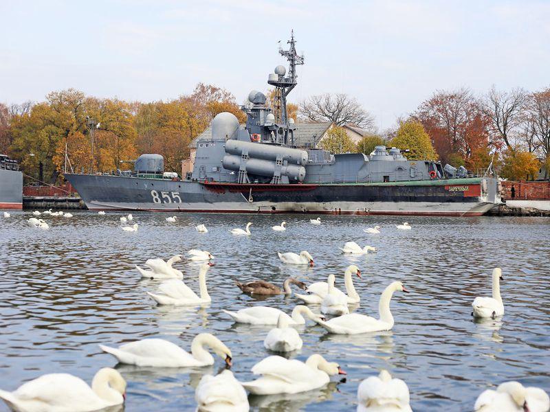 Насамый запад России— вБалтийск! - экскурсия в Калининграде