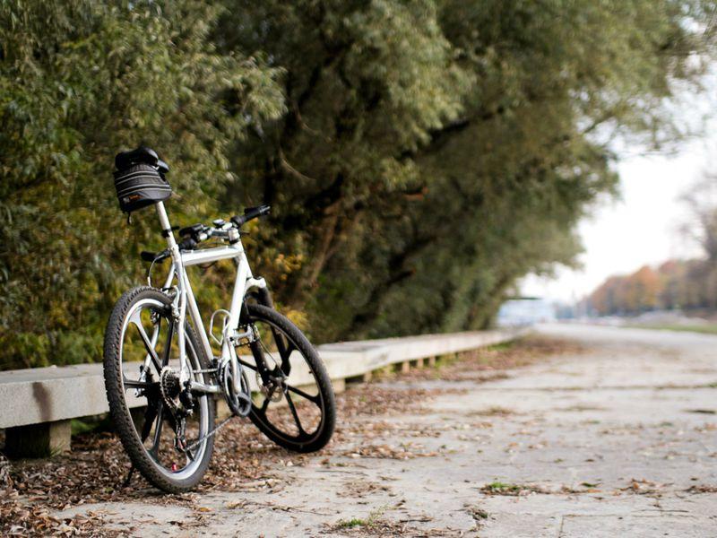 Велопрогулка по старинному Ярославлю - экскурсия в Ярославле