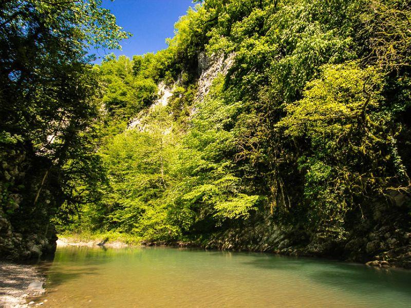 Заповедные места Хосты: хранители доисторической природы - экскурсия в Сочи