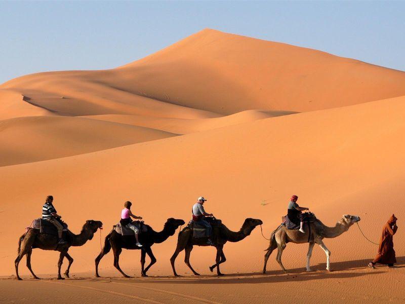 Сафари по Аравийской пустыне - экскурсия в Шардже