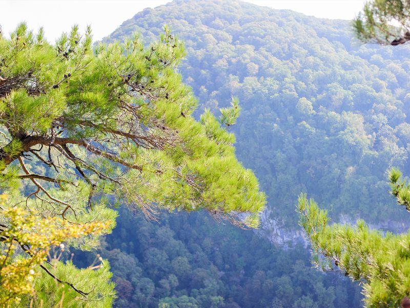 В горы! Поход к Орлиным скалам и Агурским водопадам - экскурсия в Сочи