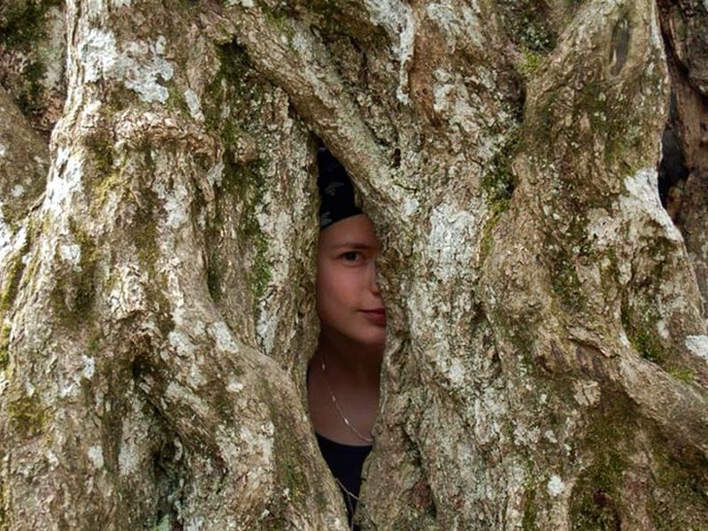 Сказки крымского леса - экскурсия в Алуште