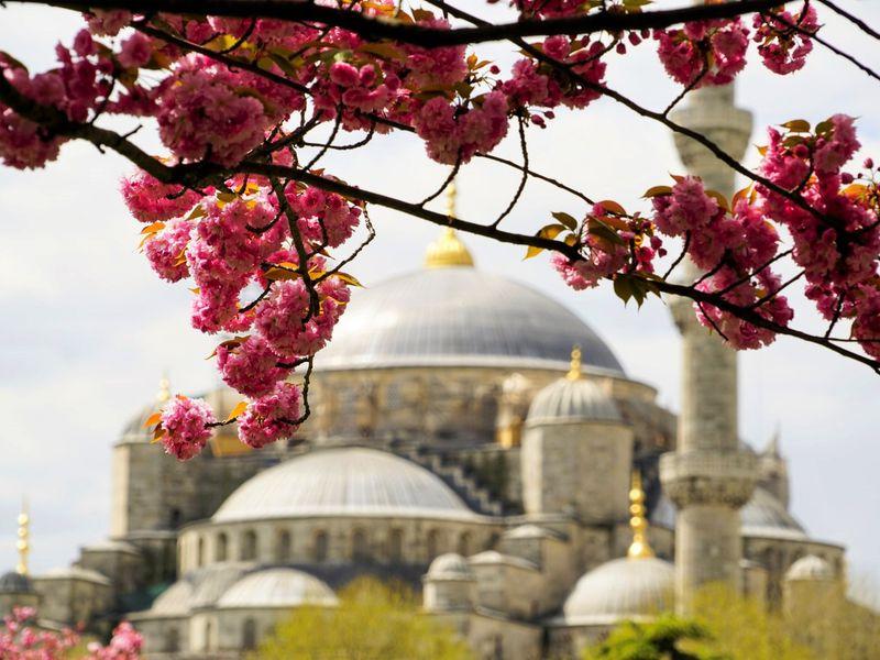 Ежедневная прогулка по Стамбулу - экскурсия в Стамбуле