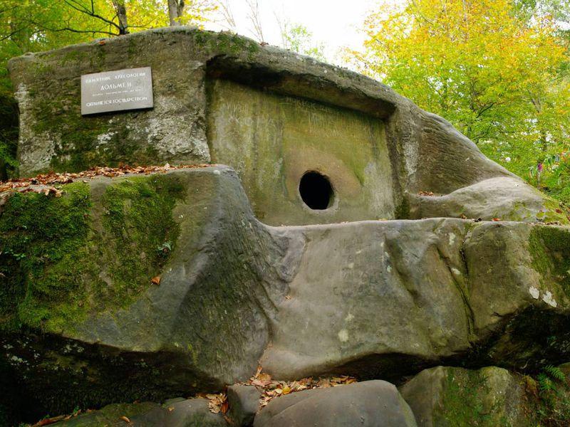 Сокровища Колхидского леса - экскурсия в Сочи