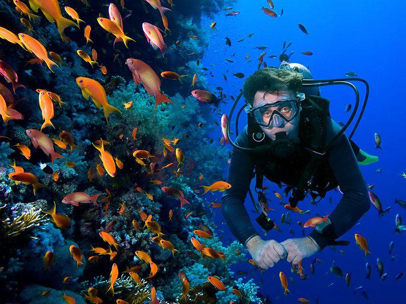 Дайвинг в Средиземном море - экскурсия в Аланье