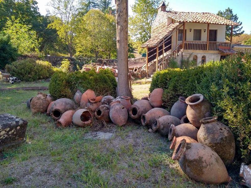Таинство виноделия в Кахетии - экскурсия в Тбилиси