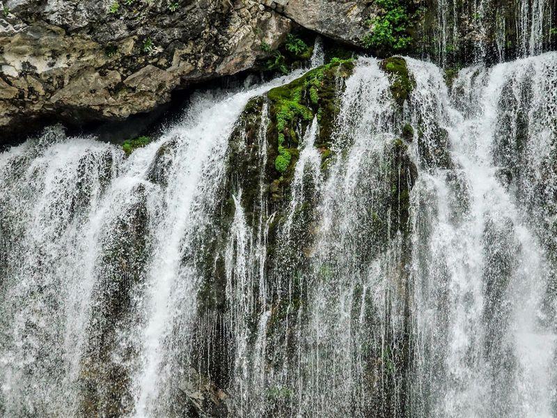 Путешествие на озеро Рица из Гагр - экскурсия в Гаграх