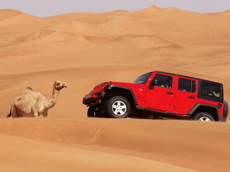 Пустынное сафари— джип-тур вДубае - экскурсия в Дубае