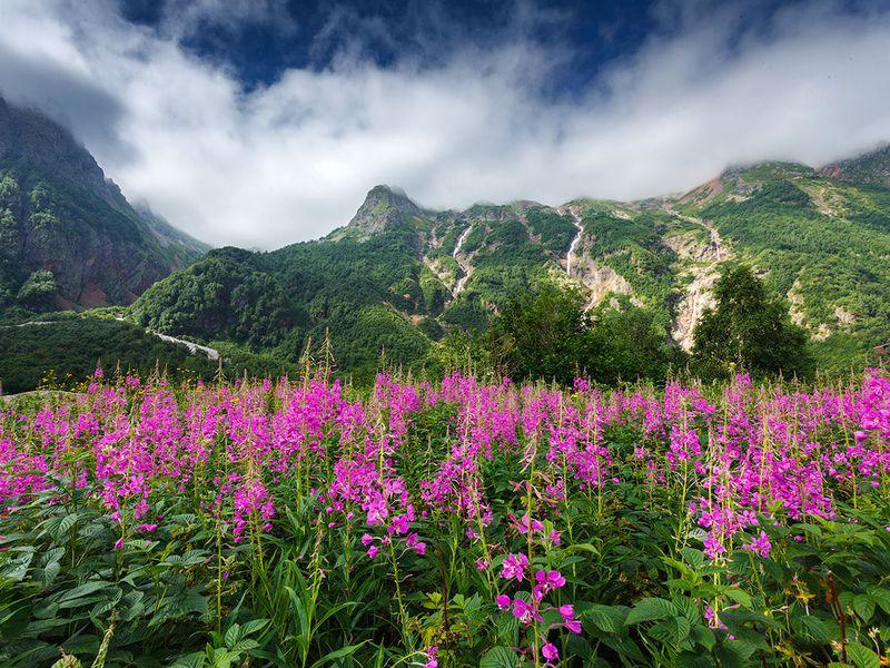 Удивительная Горная Дигория - экскурсия в Владикавказе