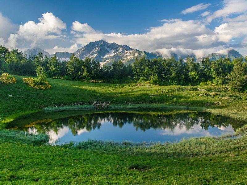 Семейный поход поСочи иКрасной поляне - экскурсия в Сочи