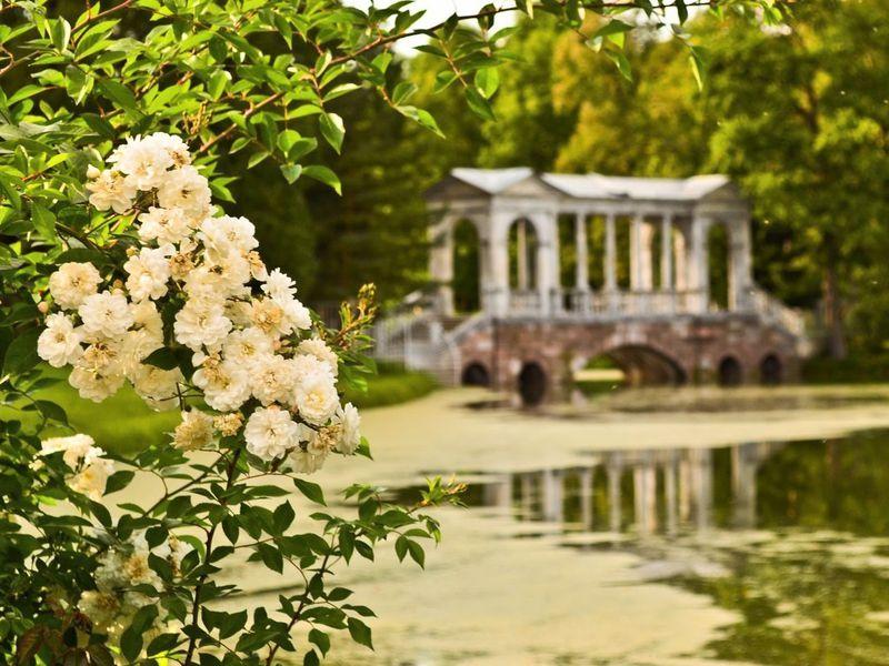 Вело-экскурсия по Пушкину и Павловску - экскурсия в Санкт-Петербурге