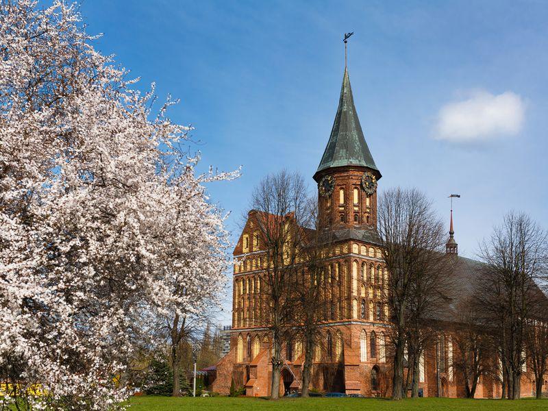 В поисках Хомлинов: квест-экскурсия для всей семьи - экскурсия в Калининграде
