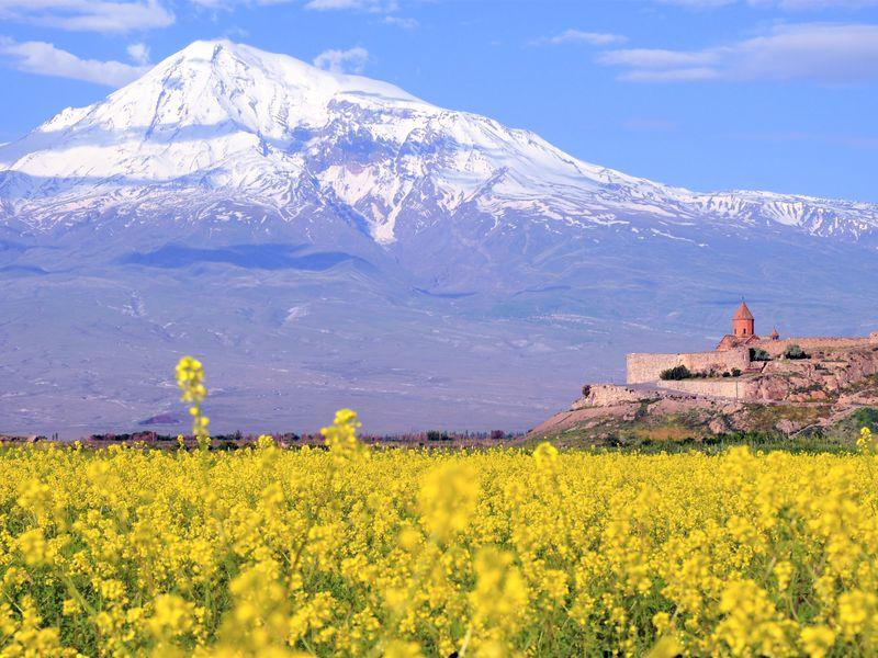 Арарат, Арени и Нораванк — дороги, пропитанные солнцем - экскурсия в Ереване