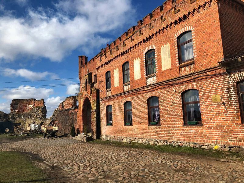 Замок, коты идинозавры - экскурсия в Калининграде