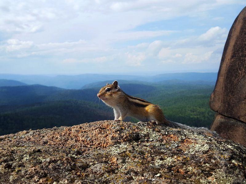 Побывать всердце заповедника Столбы - экскурсия в Красноярске