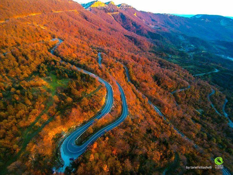 Бюджетный тур по Кахетинскому кругу. Край, где исполняются желания - экскурсия в Тбилиси