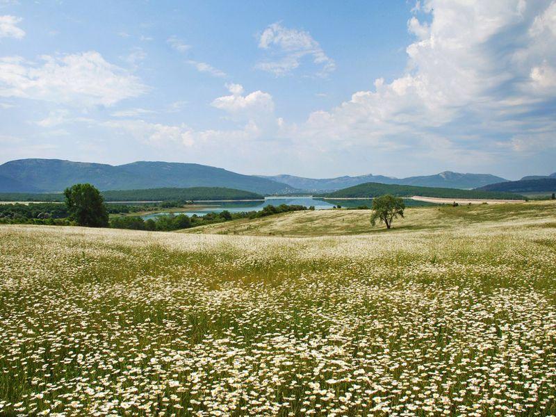 Секреты Байдарской долины: поход для всей семьи! - экскурсия в Севастополе