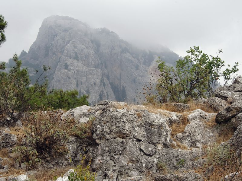 Фаселис и гора Тахталы - экскурсия в Сиде
