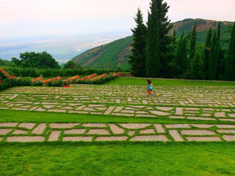 Кахетия— песнь солнца, гор ивиноградной лозы - экскурсия в Тбилиси