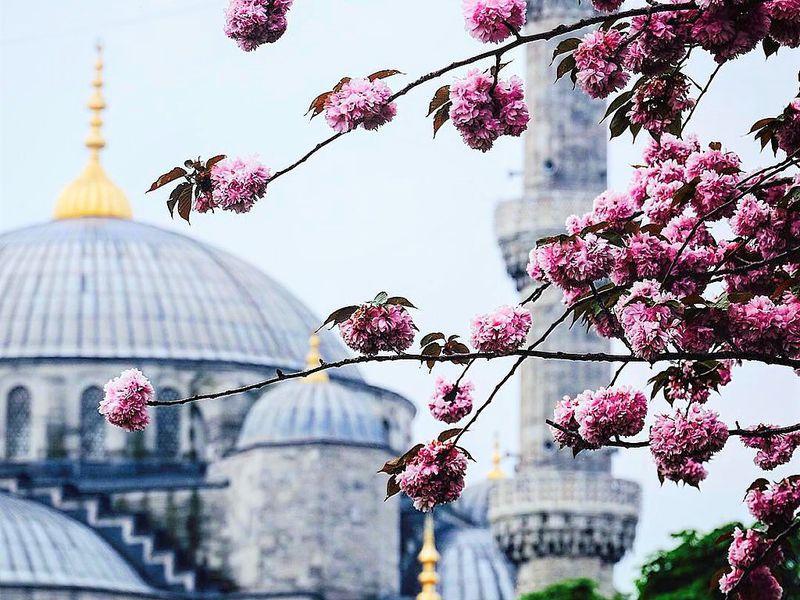 Стамбул классический и современный - экскурсия в Стамбуле