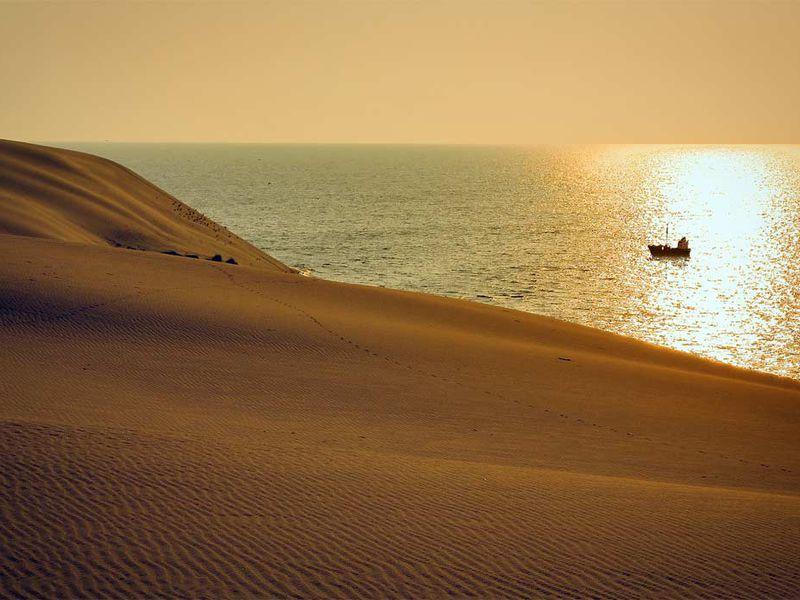 Очем поют пески янтарных дюн: история Куршской косы - экскурсия в Калининграде