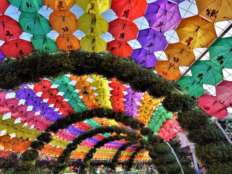 Парк цветов ивсемирная ярмарка Global Village вДубае - экскурсия в Дубае