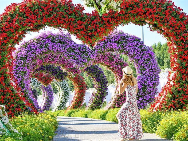 Современный Дубай, Парк цветов и Global Village - экскурсия в Дубае